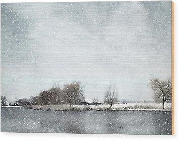 Winter Wood Print by Annie Snel