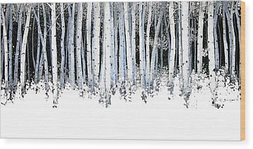 Winter Aspens  Wood Print by Michael Swanson