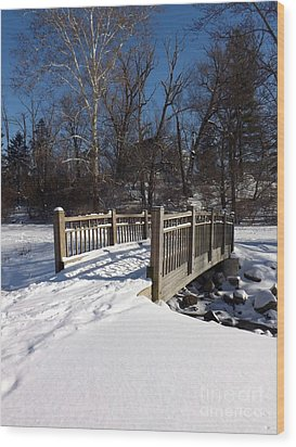 Winter At Creekside Wood Print by Sara  Raber