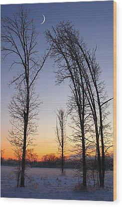 Winter At Dusk Wood Print by Randy Pollard