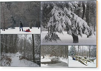 Wood Print featuring the photograph Winter At Petrifying Springs Park by Kay Novy