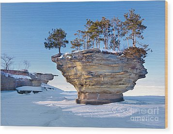 Winter At Port Austin's Turnip Rock Wood Print by Craig Sterken