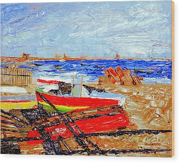 Winter At Provincetown Wood Print by Michael Daniels