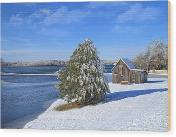 Wood Print featuring the photograph Winter At The Bog II by Gina Cormier