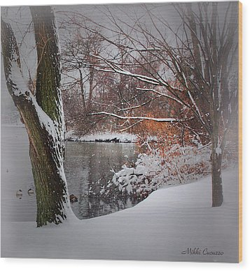 Winter At The Pond Wood Print by Mikki Cucuzzo