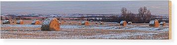 Wood Print featuring the photograph Winter Bales by Scott Bean