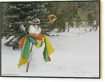Winter Baseball Ball Gown  Wood Print by LeeAnn McLaneGoetz McLaneGoetzStudioLLCcom