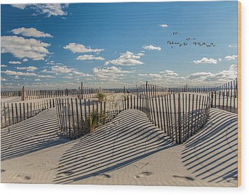 Winter Beach 9528 Wood Print