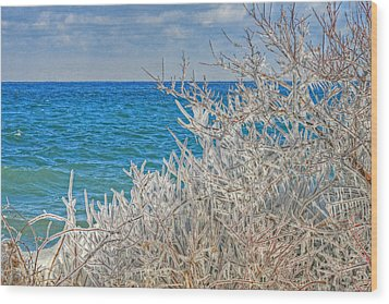 Winter Beach Wood Print by Michael Allen