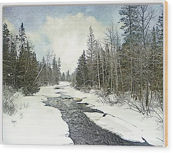 Winter Beauty  Wood Print by Dianne  Lacourciere