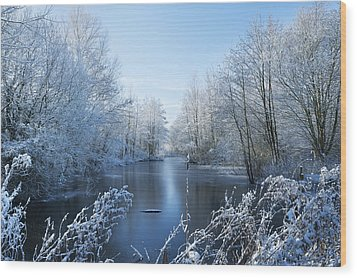 Winter Beauty Wood Print by Svetlana Sewell