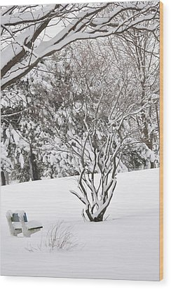 Winter Bench Wood Print by Frederico Borges