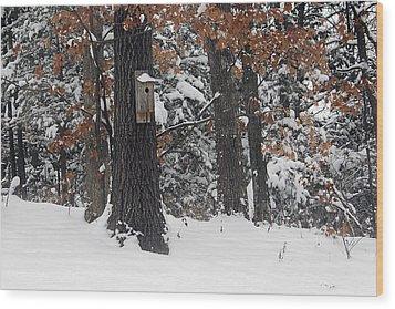 Wood Print featuring the photograph Winter Bird House by Wayne Meyer