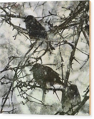 Winter Birds Wood Print by John Goyer