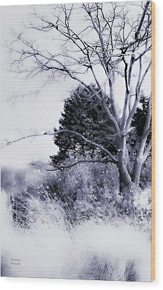 Winter Blue  Wood Print by Julie Palencia