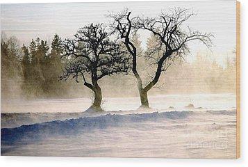 Winter Bluster Wood Print