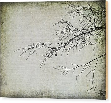 Winter Branch Wood Print by Suzanne Barber