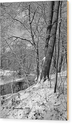 Wood Print featuring the photograph Winter By A Pennsylvania Stream by A Gurmankin