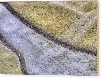 Winter Canals Wood Print by Paul W Sharpe Aka Wizard of Wonders
