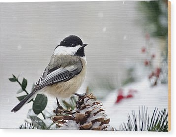 Wood Print featuring the photograph Winter Chickadee by Christina Rollo