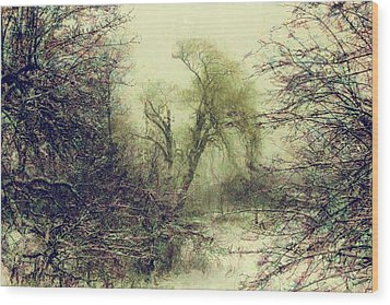 Winter Colours Wood Print