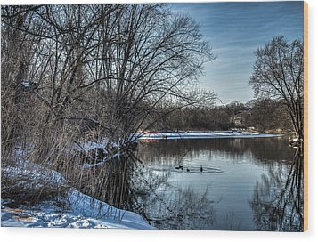 Winter Creek 2 Wood Print by Dan Crosby