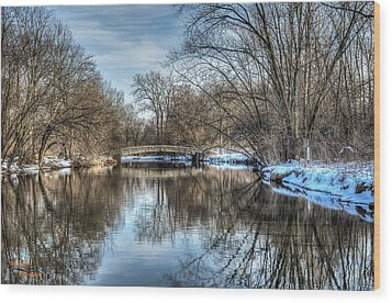 Winter Creek Wood Print by Dan Crosby