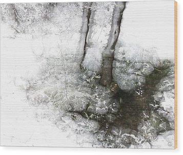 Winter Creek Wood Print by Gun Legler