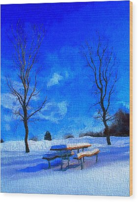 Winter Day On Canvas Wood Print by Dan Sproul
