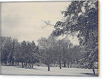 Winter Days Wood Print by Kay Novy