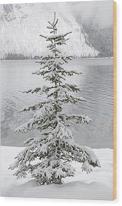 Winter Decor Wood Print
