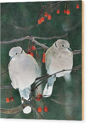 Winter Doves Wood Print by Betty LaRue