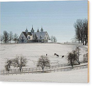 Winter Dream Wood Print by Roger Potts