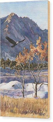 Winter Drift Wood Print by Anne Gifford