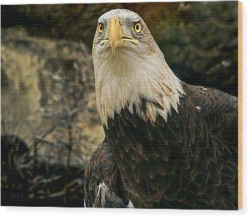 Winter Eagle Wood Print by Bob Orsillo