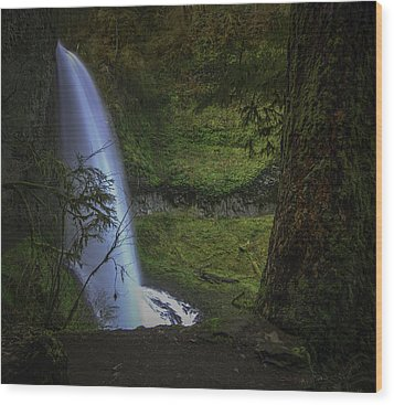 Winter Falls Wood Print by Jean-Jacques Thebault