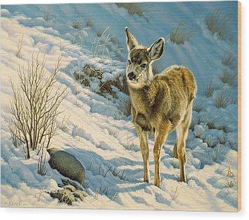 Winter Fawn - Mule Deer Wood Print by Paul Krapf