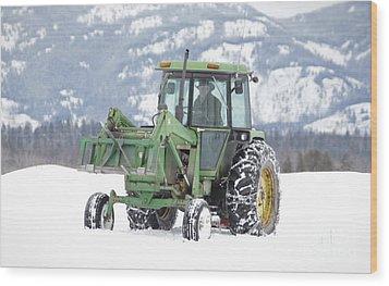 Winter Feeding Wood Print by Diane Bohna