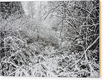Winter Field Wood Print by Crystal Hoeveler
