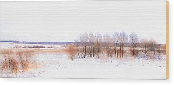 Winter Fields. In Color Wood Print by Jenny Rainbow