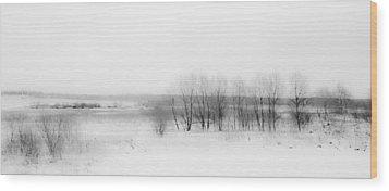 Winter Fields. Monochromatic  Wood Print by Jenny Rainbow
