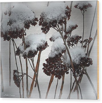 Winter Flowers Wood Print by Mikki Cucuzzo