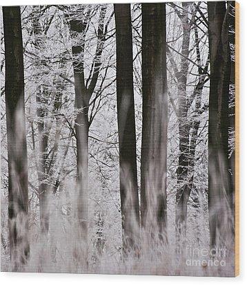 Winter Forest 1 Wood Print by Heiko Koehrer-Wagner