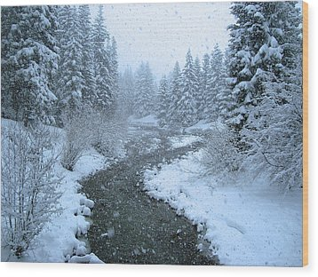 Winter Forest Wood Print by David Rucker
