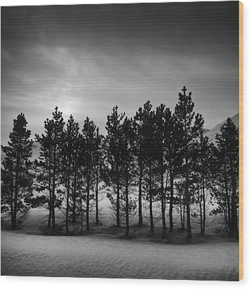 Winter Forest Wood Print by Frodi Brinks