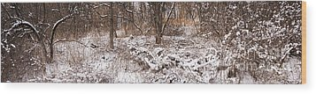 Winter Forest Panorama Wood Print by Elena Elisseeva