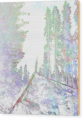 Winter Forest Scene Wood Print by John Fish