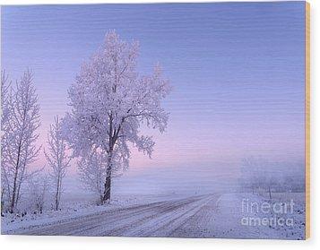 Winter Frost Wood Print by Dan Jurak