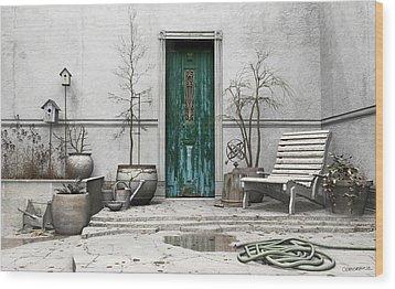 Winter Garden Wood Print by Cynthia Decker