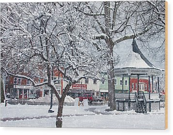 Winter Gazebo Wood Print by Joann Vitali